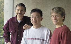 Alex Zettl (left), Xing Chen, and Carolyn Bertozzi have developed a technique for safely interfacing carbon nanotubes with biological cells.