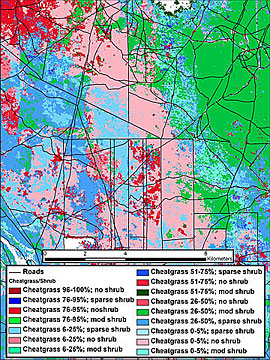 The PNWRC software details the distribution of cheatgrass and shrub cover throughout approximately 80 square miles of Ada County in southern Idaho.
