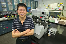 Fanqing Chen (pictured) and Daniele Gerion have harnessed the powers of nanotechnology to image the interior of cell nuclei.