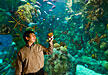 Yifeng Wang holds a piece of banded iron during a visit to an aquarium.