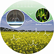 Cover image of the May 10 Angewandte Chemie publication.
