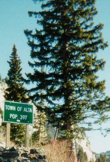 The Alta Summit December 1984